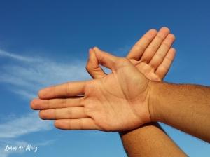 manos pájaro